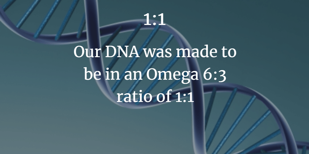 Our DNA was Programed to an omega 6:3 ratio of 1:1